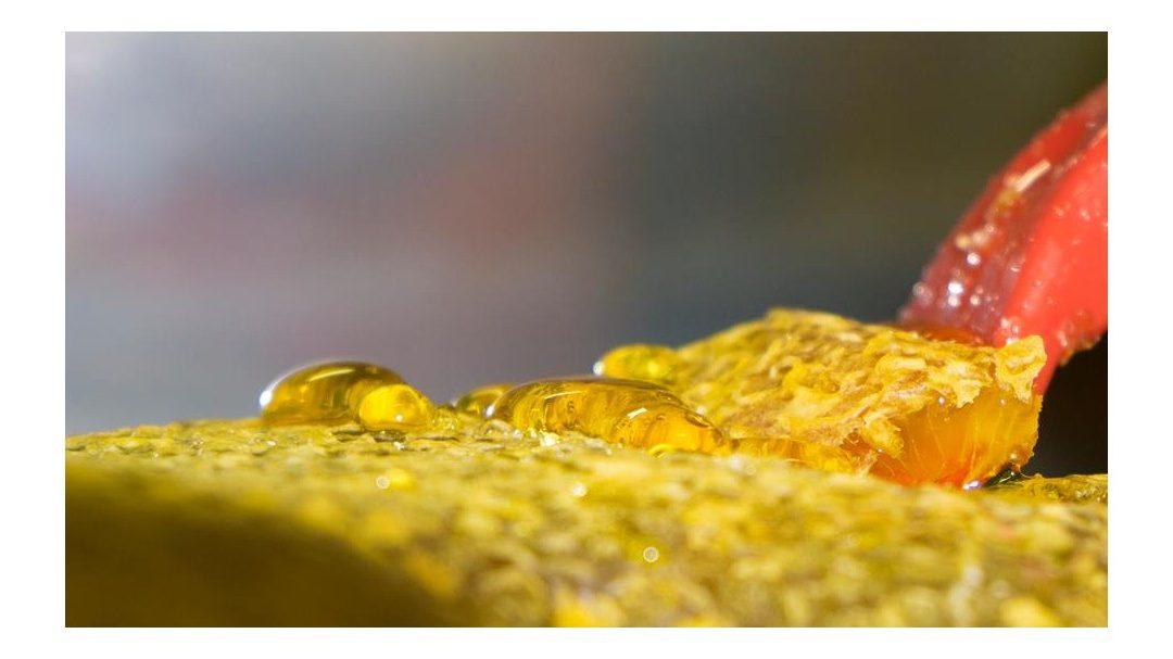 Il miele e le sue proprietà